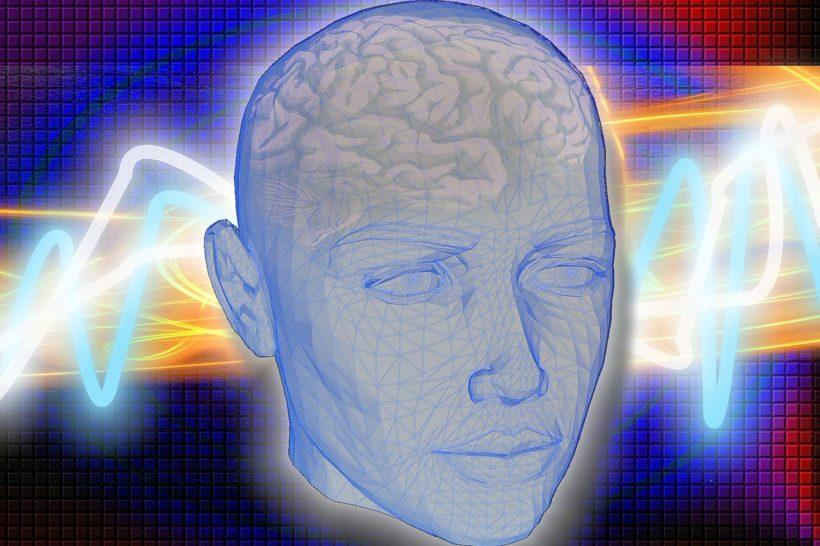 mozg-zdjecie